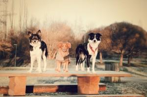 trio (3)