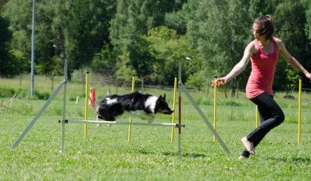 agility 37