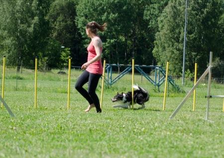 agility 38