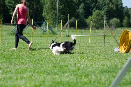 agility 45